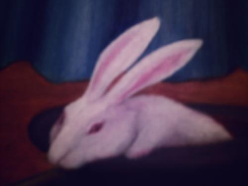 Rabbit, from Magic Happens