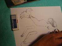 Drawingdownthemermaid