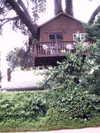 Dreamhouse_treehouse
